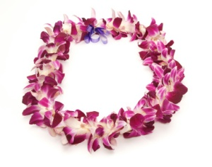 stock-photo-5017972-hawaiian-lei