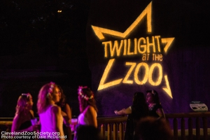 twilight_party